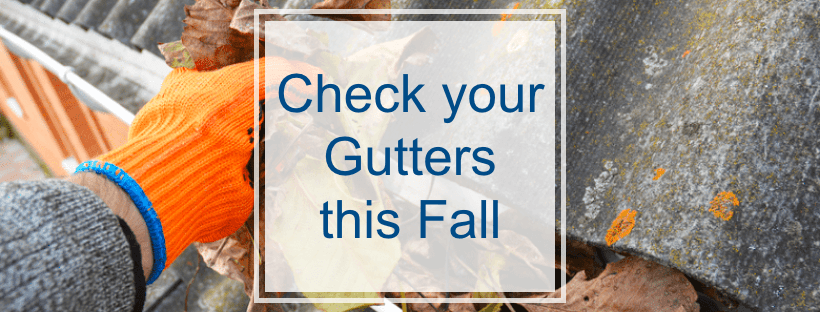 Check your Gutters this Fall